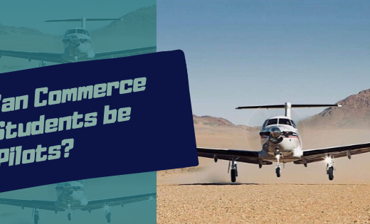 pilot training for commerce students